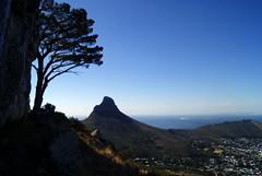 Table Mountain (-Patri-) Tags: cape town ciudad cabo ciudaddelcabo capetown south africa sudafrica table mountain montaa nature naturaleza cielo sky azul blue rbol tree mar sea