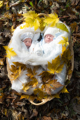 One day I found two little angels in the woods (antoniopedroni photo) Tags: neonati baby babies bambini appenanati woods bosco dream sogno foglie autunno leaves autumn fall giallo yellow foliage
