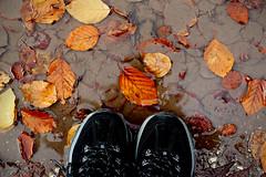 20/365 (yanakv) Tags: canon 50mmf18stm rain lluvia me 365days 365dias