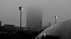 city in fog (TaglessKaiju) Tags: mist misty fog foggy philadelphia street early morning city