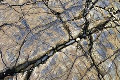 Set in Stone (RestlessFiona) Tags: 27thseptember2016 isleofskye stone rock stones pattern likeamap grey seashore line lines restlessfiona explore