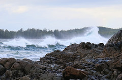 Some West Coast fun at Tofino (RebelRob) Tags: vancouverisland tofino britishcolumbia