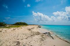 20141109_Urlaub-Curacao_N814705.jpg (potto1982) Tags: jahr beach nikon strand karibik datum nikond810 caribbean d810 curaçao 2014