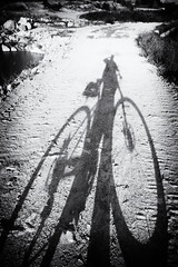 cycle noir (polo.d) Tags: bicycle cycle shadow silhouette people ride street noir distortion