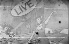 Elvis Live (Arne Kuilman) Tags: zaandam nikon f3 agfapan expiredfilm ilford d76 film scan old v600 street straat dancing dansen sixties dansschool sign