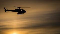 _DSC2330 (Tromsø Airport) Tags: as35 avinor fly helikopter luftfart luftfartøy