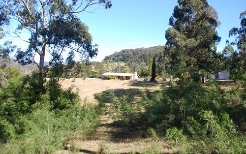 171 Back Creek Road, Nethercote NSW 2549