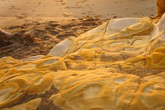 (florianselchow) Tags: nex sony beach sand landscape sunset cambria