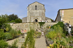 L'glise romane et son jardin (Flikkersteph -4,000,000 views ,thank you!) Tags: architecture religious romane medieval catholicchurch outdoor garden rustic greenery summer holiday people clearsky charente village dignac france
