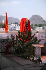 Kali (paulbar) Tags: moments inspirations emotions feelings sensations traveling nature