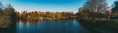 Where the Landwehr Canal splits (ftrc) Tags: landwehrcanal fotostrasse winter berlin kreuzberg treptow neuklln