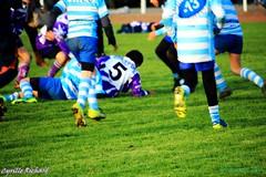 Brest Vs Plouzané (67) (richardcyrille) Tags: buc brest bretagne rugby sport finistére plabennec edr extérieur