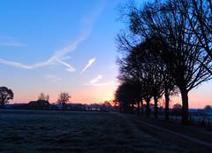 Limburgs landschap thv Montfort  --HDR-- (Frank Berbers) Tags: hdr highdynamicrange imageriegrandegammedynamique la landschap landschaft landscape paysage nederland sunrise zonsopkomst sonnenaufgang leverdusoleil limburgslandschap limburg middenlimburg sky blauestunde bluehour heurebleue blauweuurtje nikoncoolpixs9500 montfort