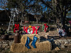County Christmas (Jims_photos) Tags: antiques wimberleytexas texas trees outdoor outside oldmemories adobelightroom adobephotoshop shadows sunnyday daytime jimallen lightroom landscape vintage nopeople memories
