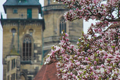 Stuttgart (bortescristian) Tags: canon germany deutschland photography eos rebel photo spring foto fotografie stuttgart picture april imagine dslr cristian germania aprilie poza primavara 500d alemagne 2013 斯图加特 xti bortes bortescristian cristianbortes شتوتغارت горад штутгарт シュトゥットガルト שטוטגרט 슈투트가르트 স্টুটগার্ট 史特加