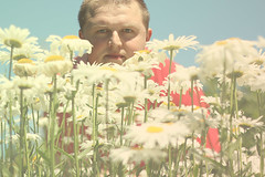 Summer Days.... (JLC Photography Spokane,WA) Tags: park flowers selfportrait man male men guy nature daisies canon garden outdoors 50mm washington spokane state creative photoaday daisy 365 conceptual tone summerdays manitopark