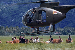 1968, Ba Xoi, Vit Nam (tommy japan) Tags: trees people animal mammal landscapes moving war asia southeastasia vietnamese asians cattle many aircraft victim unitedstatesofamerica hill group gesturing battle vietnam helicopter transportation vehicle males farmer females waving livestock bovine pilot armedforces villager casualty agriculturalfield cropland southeastasians domesticanimal historicevent americanarmedforces asianhistoricalevent northamericanhistoricalevent unitedstateshistoricalevent vietnamwar19591975 vietnamesehistoricalevent medicalpractitioner agriculturalworker medicaltechnician warvictim