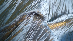 "Коллекция Italia шир.310 см шелк 80% ,полиамид 20% 7000 р/м скидка 50% • <a style=""font-size:0.8em;"" href=""http://www.flickr.com/photos/92440394@N04/9796582295/"" target=""_blank"">View on Flickr</a>"