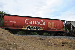 ashk (Metal Fr8 Flicker) Tags: hot cars ass big tits trains boom coal bam boxcars burners hoppers fr8 grainers fr8s ashk