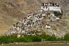 Chemrey Gompa - Ladakh (-AX-) Tags: india village himalaya bâtiment himalayas jk ladakh tibetanplateau chemrey chemreygompa
