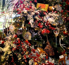 Merrifield Gainesville Holidays 2013 (EDWW day_dae (esteemedhelga)) Tags: santa christmas house saint bread reindeer ginger log chanukah nick decoration holly ornaments angels yule merry claus christmastrees happyholidays sled nutcrackers seasongreetings wreathes merrifieldgardencenter