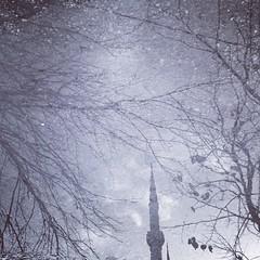#Snapseed (anwar marghalani) Tags:   snapseed