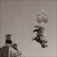hanging around soho (Janine Graf) Tags: nyc silly 6x6 sepia balloons whimsy downtown soho surreal rhino artrage watertowers whiterhinoceros juxtaposer janine1968 iphone4s scratchcam janinegraf moderngrunge ohlookadime nycmobilemeetup