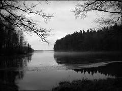 Lake Snyten (*Kicki*) Tags: bw mist lake nature sweden monotone explore monocrome västmanland svartvitt flickrexplore bergslagen explored ängelsberg snyten