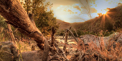 Afternoon In The Valley 2 (Ausguy81) Tags: sun water canon river log afternoon dusk 7d goldenhour