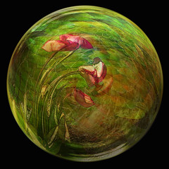 Tulips caught in the current. (mistissimo) Tags: flowingwater swirlyartnouveaudesign globularsphere