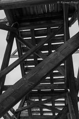 Holz (Rainer Preu) Tags: winter digital blackwhite nikon schwarzweiss schluchsee blackandwhitephotography nikonshooters d5200 lr5