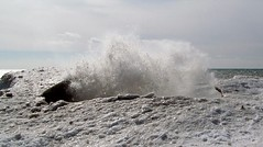 SPLASH! (Will S.) Tags: winter snow ontario canada ice beach lakeontario wicklow mypics wicklowbeach