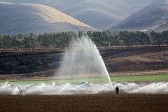 Irrigation (Kirk Lougheed) Tags: california field landscape farm farming sprinkler drought agriculture irrigation salinasvalley