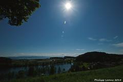 See ber See (_Lawri_) Tags: blue summer sky panorama sun sunlight nature germany deutschland spring nikon view natural outdoor sommer natur may himmel sunny bluesky mai f22 aussicht bodensee sonnig sonne blauerhimmel sonnenstrahlen frhling lakeofconstance badenwrttemberg frhjahr oberschwaben d80 nikond80 schleinsee panoramaphotographie