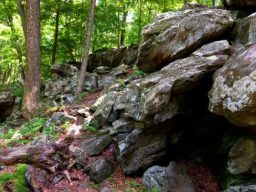 Catoctin Rocks V
