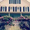 Lane's Island house (moonwatcher13) Tags: square maine squareformat vinalhaven iphone rosaceae rosarugosa beachrose lanesisland iphone4 iphoneography instagram instagramapp uploaded:by=instagram