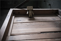 "Danbo ... last ""guest"" (Only in RAW ) Tags: japan canon toys happy robot amazon box weekend explorer mini days cardboard danny 365 danbo amazoncojp 366 toyphotography revoltech danbee danboard 366daysproject minidanbo"