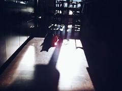 Shadowcat (rocketcandy) Tags: world trip travel light summer vacation cats canada nature animal animals vancouver cat happy dance kitten mood glow afternoon bc weekend getaway britishcolumbia okanagan wildlife dream atmosphere roadtrip traveller explore cuddle photowalk pacificnorthwest imagination loves summertime meowmeow kelowna 365 lit weekendtrip hue breezy drift iphone kittycat 2014 happyplanet nyanko starred photowalks project365 365days explored 365project vsco explorebc dearcreatures vscocam