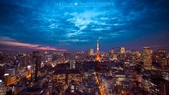 (Natsuko) Tags: tokyotower