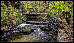 Hoy Creek, Coquitlam, BC (Alex Karpovski) Tags: coquitlam hoycreek fall bc britishcolumbia vancouver