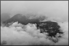 Fog (erikbiasutto'sphotography) Tags: nikon d200 nebbia fog bw black white bianco nero bn montagna mountain carina friuli frill italia italy fvg trees alberi clouds nuvole