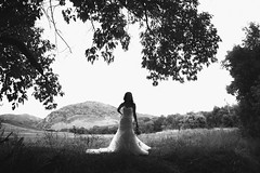 Silhouette (Irving Photography | irvingphotographydenver.com) Tags: canon prime shooters lenses colorado denver wedding photographers