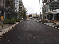 Trees planted along frontage of Terry Green Street. Offset parking to reduce driver travel speeds. (Seattle Department of Transportation) Tags: sdot seattle transportation donghochang terry green street offset parking reduce driver travel speeds construction terryave trees