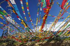 wind passes (kangxi504) Tags: tibet china prayerflag darchor