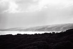 Sea Spray (mezuni) Tags: flinderschase southaustralia australia au kangarooisland authenticki visitsa ki