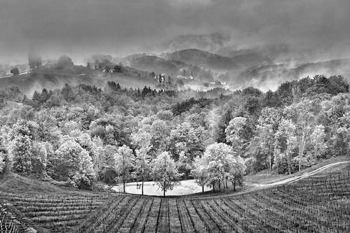 rainy day in styria