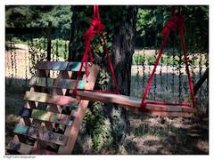 La balanoire (photos.osmose) Tags: zen znitude campagne calme envol sentiers enfance extrieur tang t vasion eau soleil solitude sp