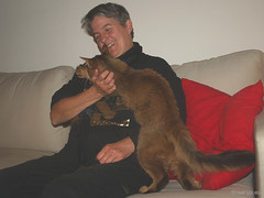 Rags saying goodbye to his breeder (2011) (Finn Frode (DK)) Tags: cats introduction newhome anniversary rags somali dusharatattersandrags som breeder teresaguldager animal pet cat indoor