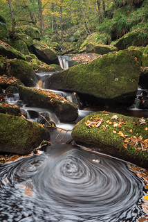 Padley Gorge Autumn Whirlpool