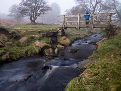 watching the stream (neil.bulman) Tags: countryside longshawestate longexposure peakdistrict nature nationalpark derbyshire longshaw fog water nationaltrust boy burbagebrook derbyshiredalesdistrict england unitedkingdom gb